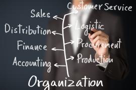 Organizational_Structures